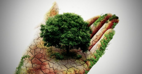 Friendship with Nature - Sacred Journeys Spiritual Community